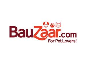 Codice promozionale Bauzaar
